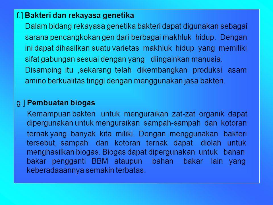 f.] Bakteri dan rekayasa genetika
